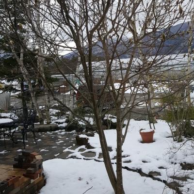 雪は降ったけれど